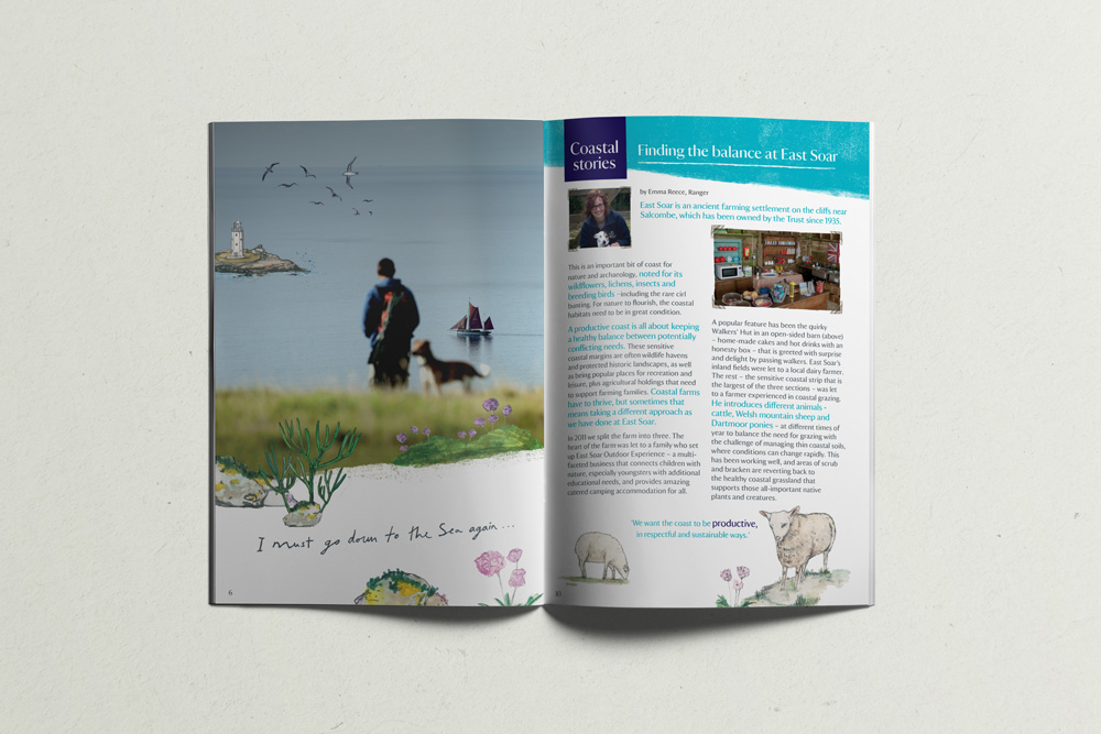 South West Coastal Festival National Trust Booklet Design, sail boat, seaside illustration