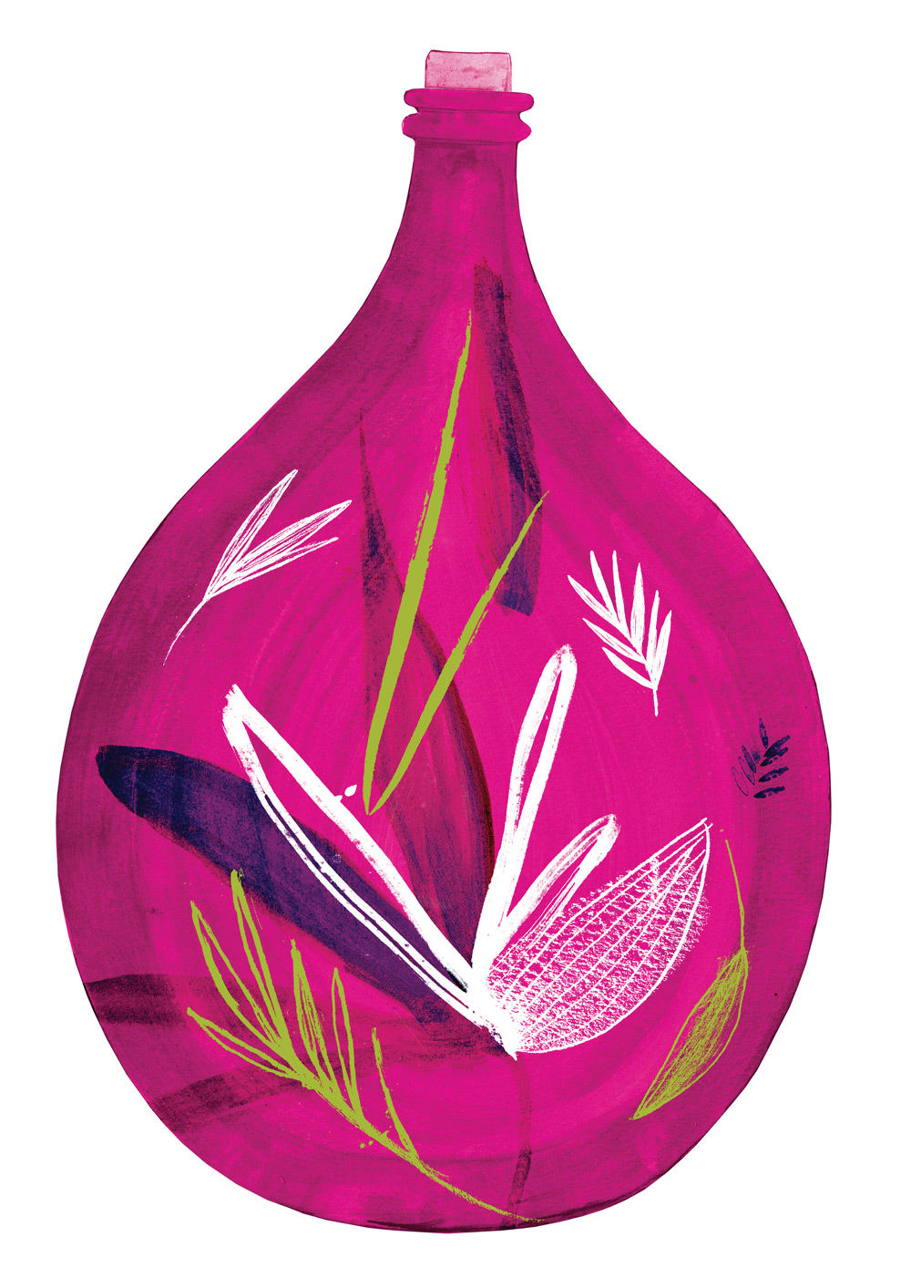 Made For life Organics Pink Demijohn hand painted illustration by Wild Bear Designs