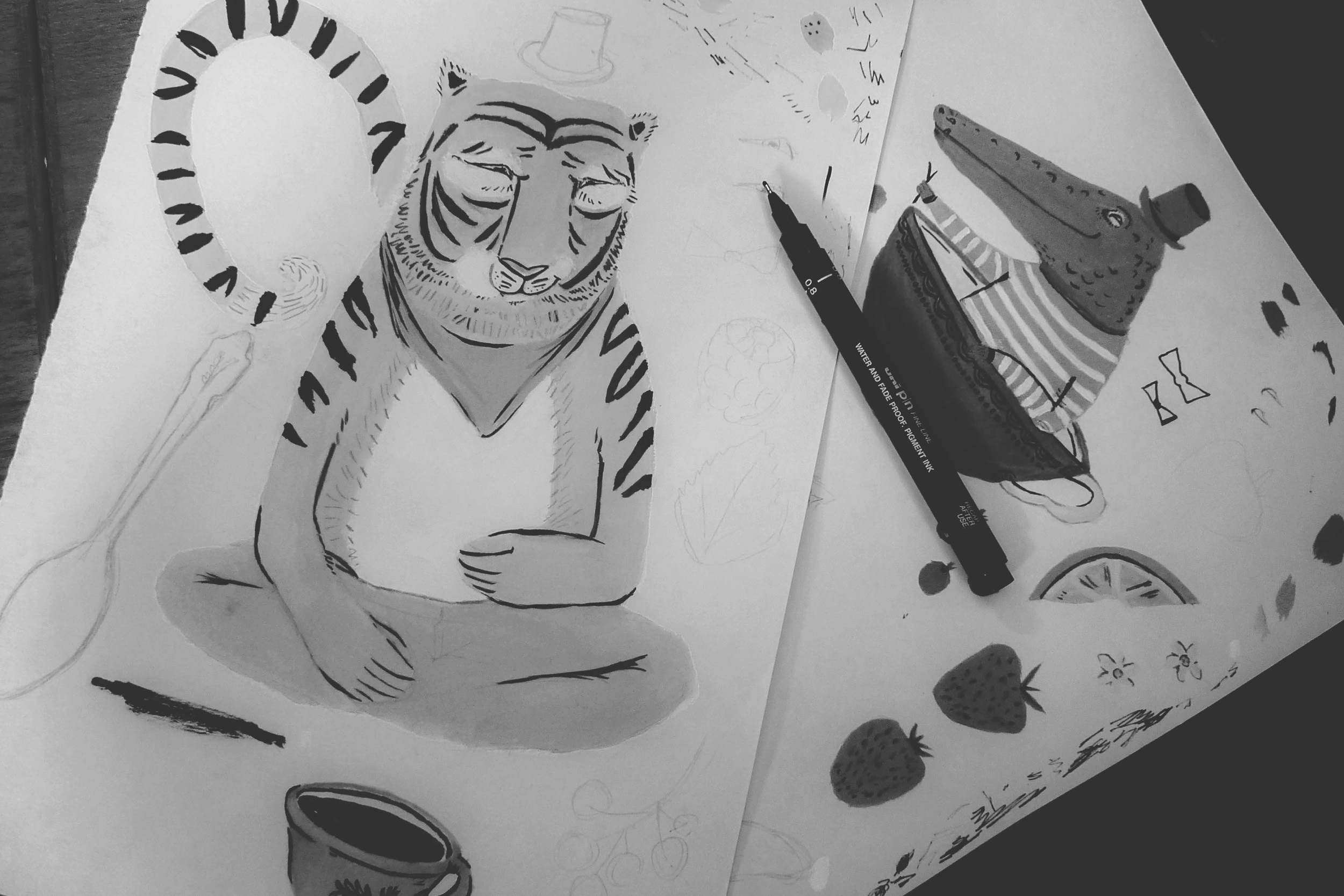 Small & Wild tea packaging design illustration sketches by Wild Bear Designs